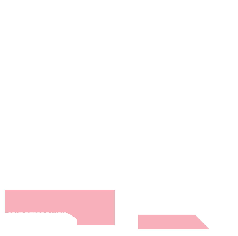 Forum du CNRS « Que reste-t-il à découvrir » - Théâtre National de Toulouse – 15 & 16 Juin 2018